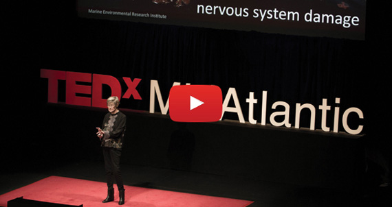 Reckless Endangerment: The Gulf Oil Spill Revisited - Susan Shaw at TEDxMidAtlantic